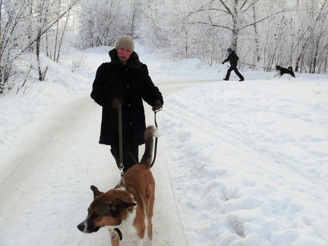 Холод собачий - Александр Алексеев