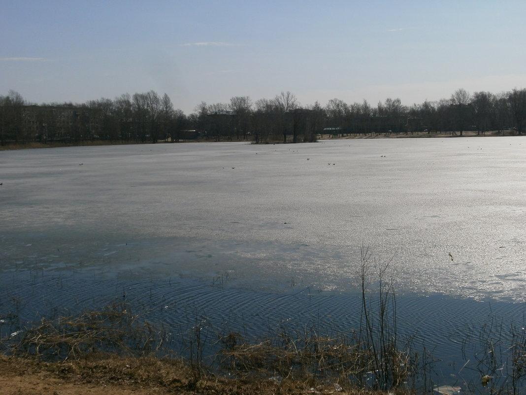 Тонкий лёд - Алёна Савина