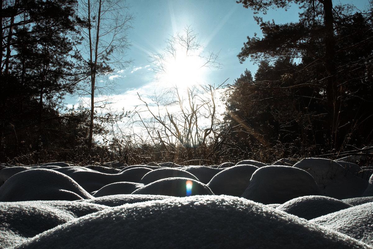 Природа - Илья Матвеев