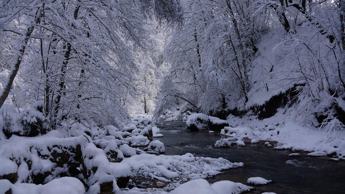 Зима ... - Serega Денисенко