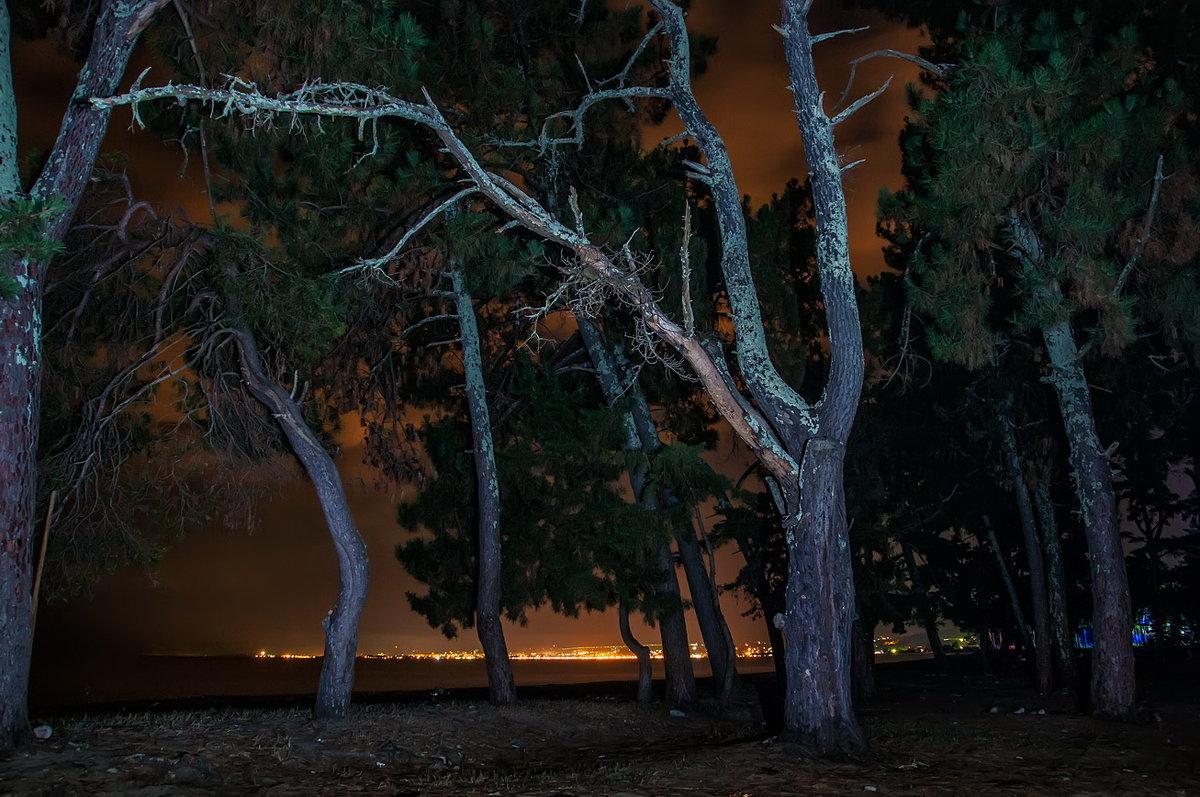 Ночь - Александр Криулин