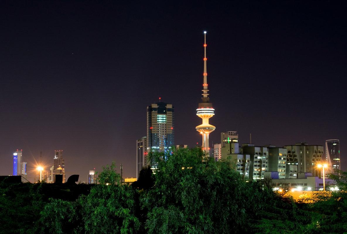 Ночной Кувейт - Kristina Suvorova