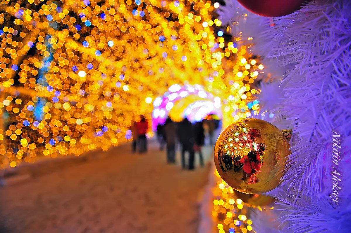 Новогодние огни - Алексей Никитин