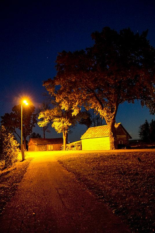 Ночь, осень 2 - Genych Bartkus