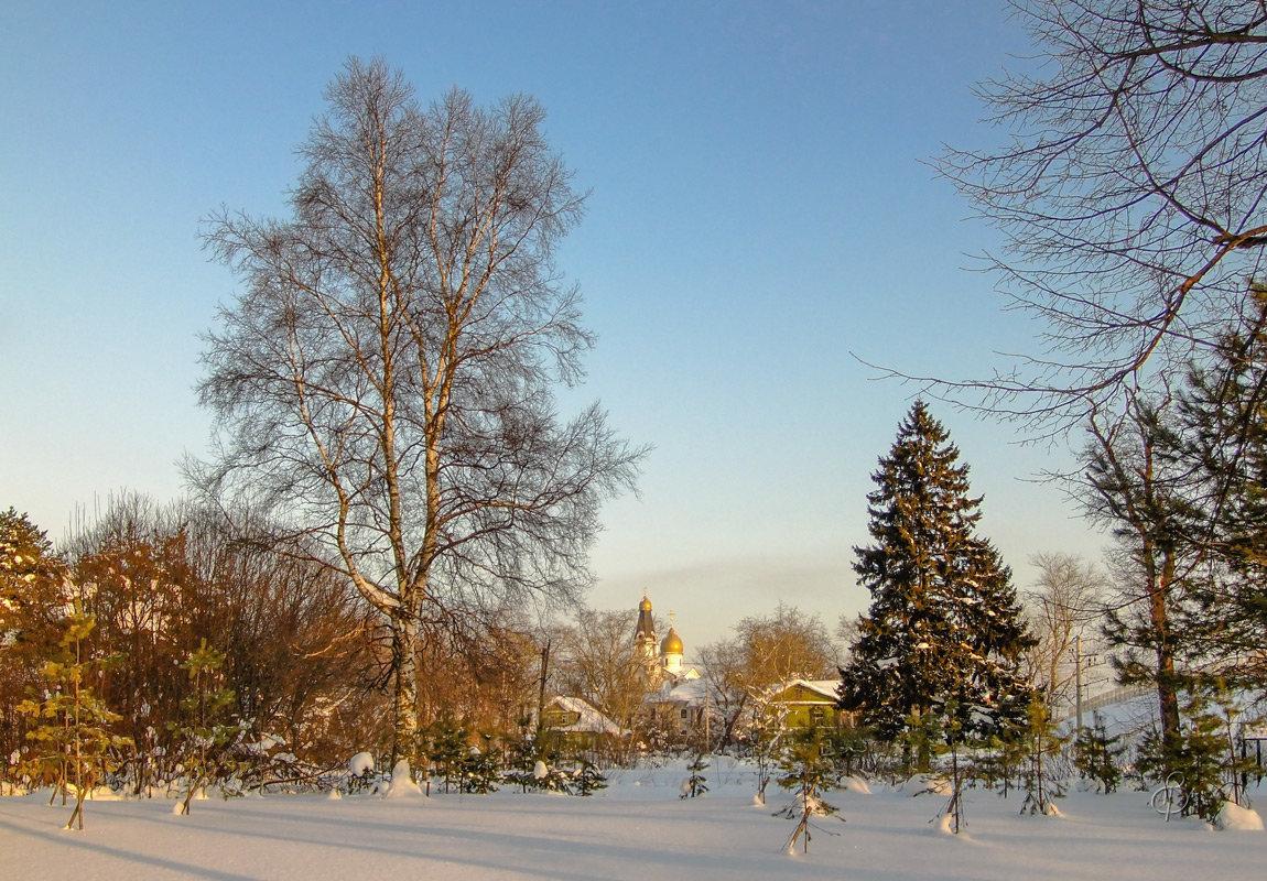 Зимний вечер - Виталий