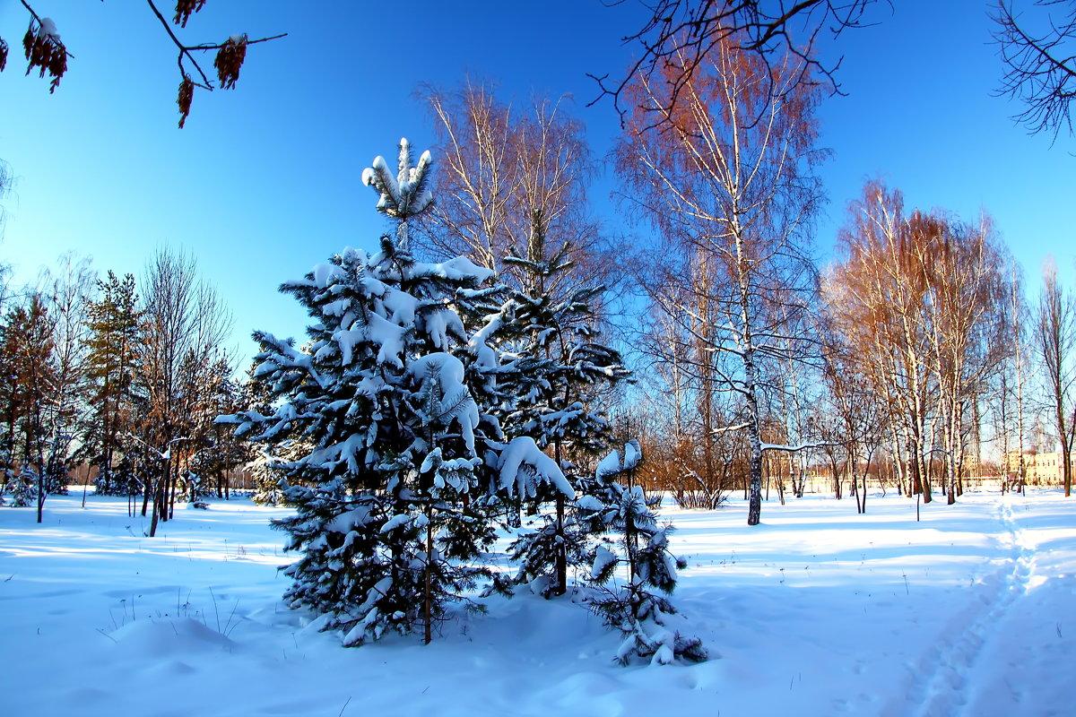 Сормовский парк - lapin_valerei@mail.ru