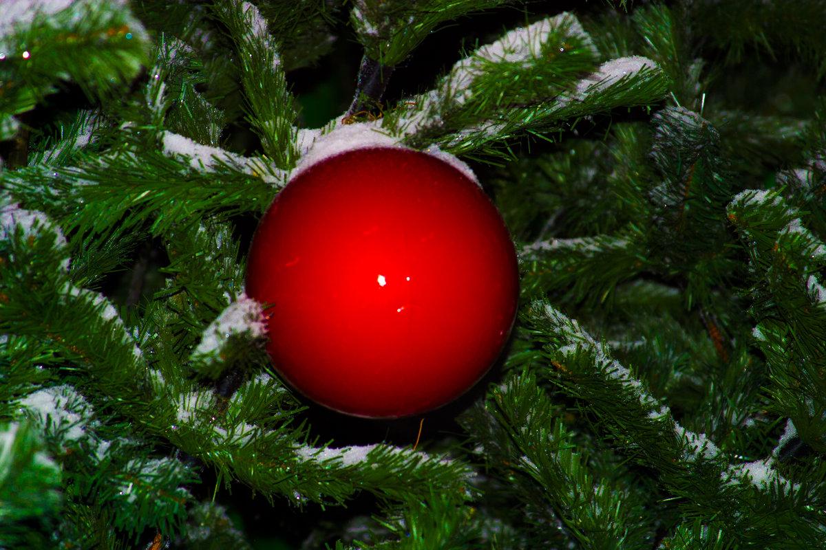 шарик в снегу - Любовь Потравных
