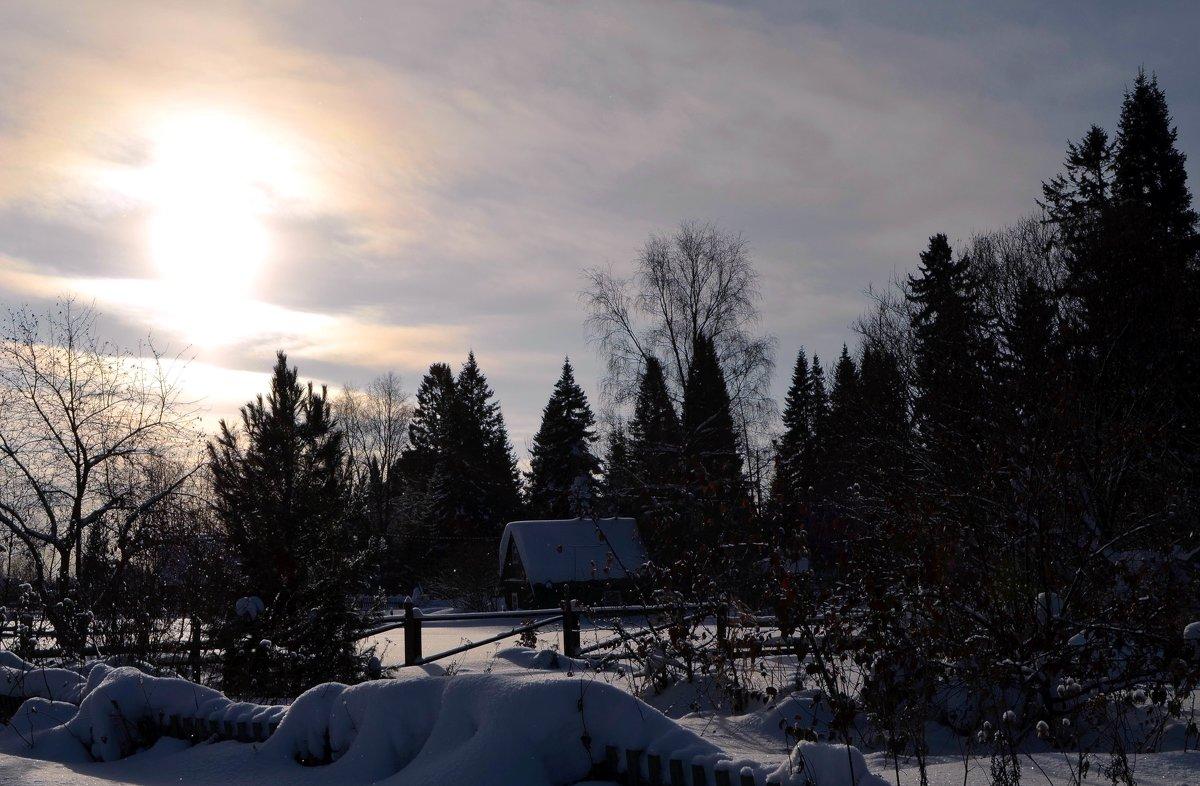Снежная зима - Вера Андреева