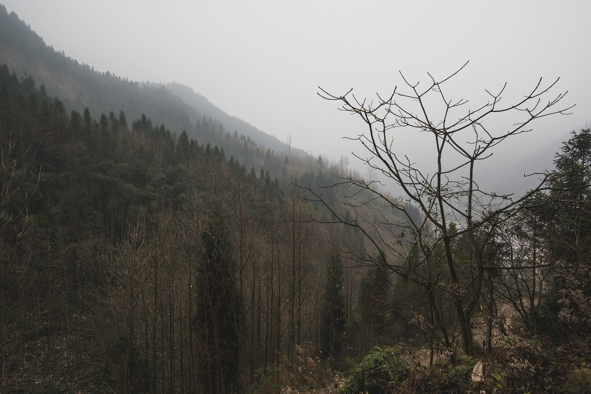 горы Силин - Pavel Shardyko
