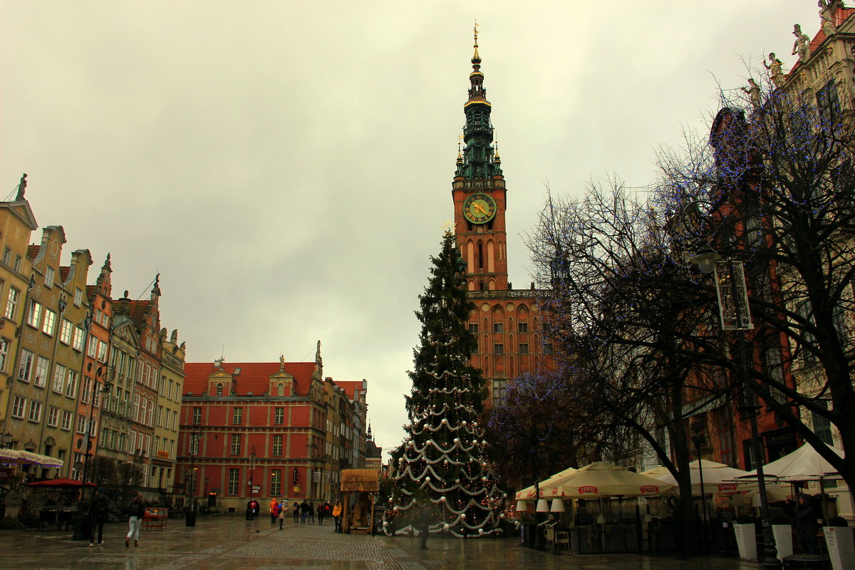 Новогодняя елка - Ольга