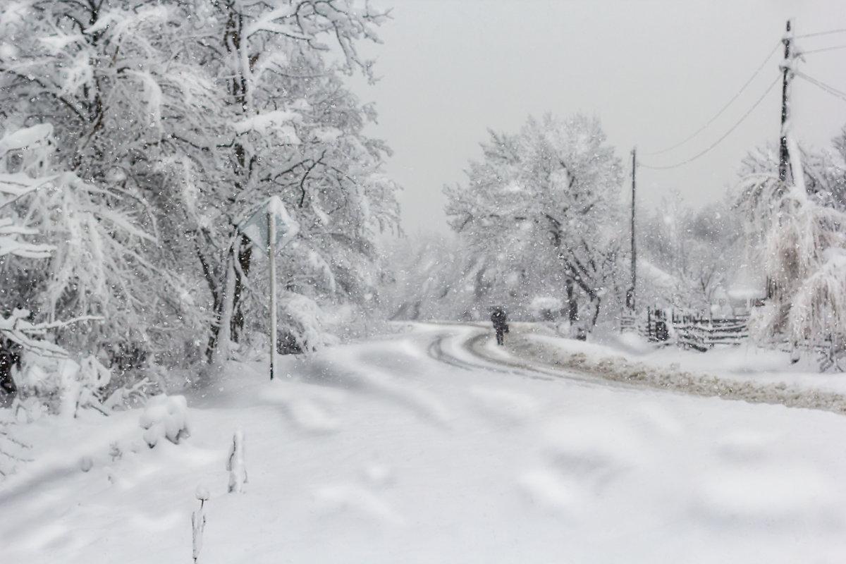 Снежная картина - Елена Васильева