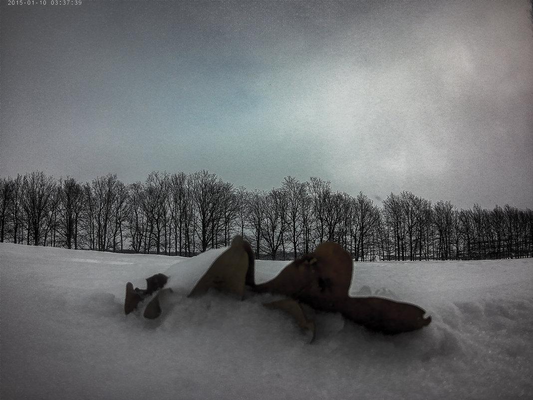 Дубовый лист в снегу - Franky Fraker