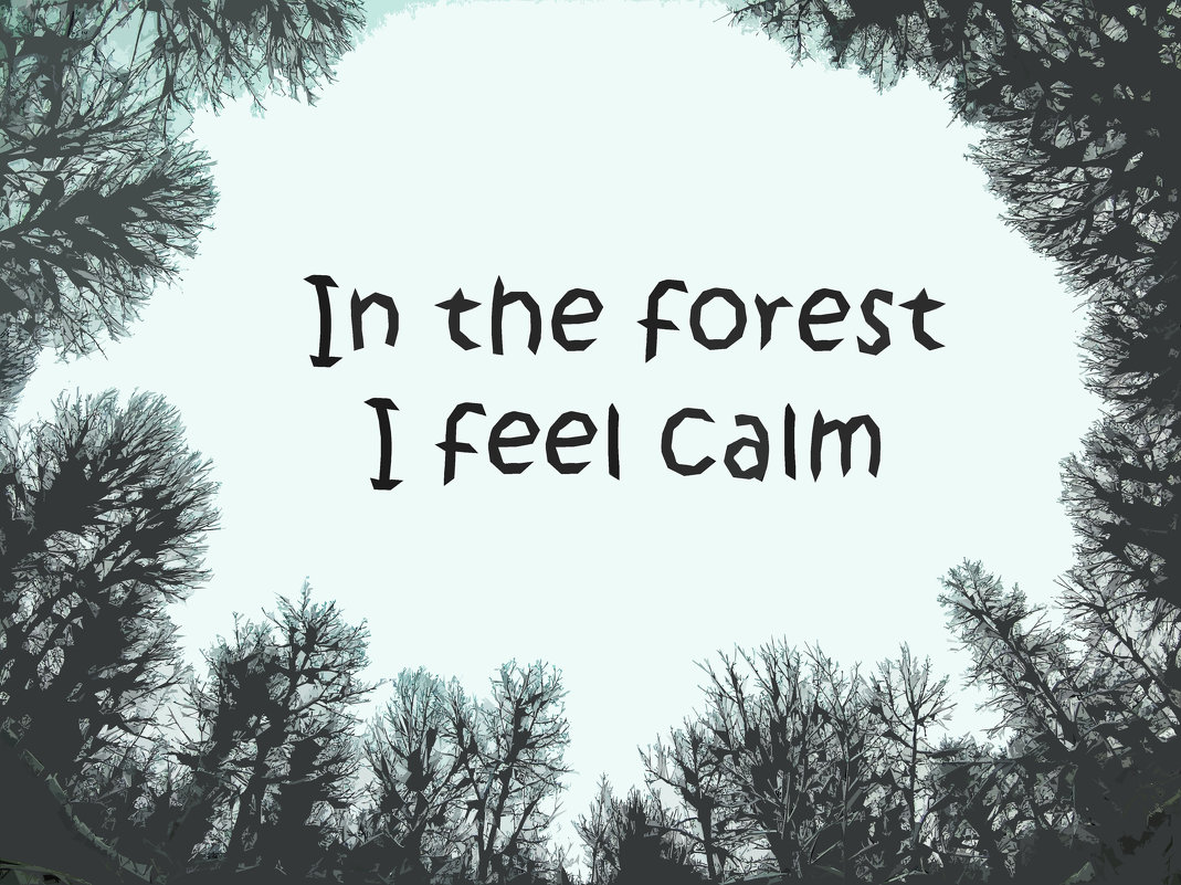 In the forest I feel calm - Franky Fraker