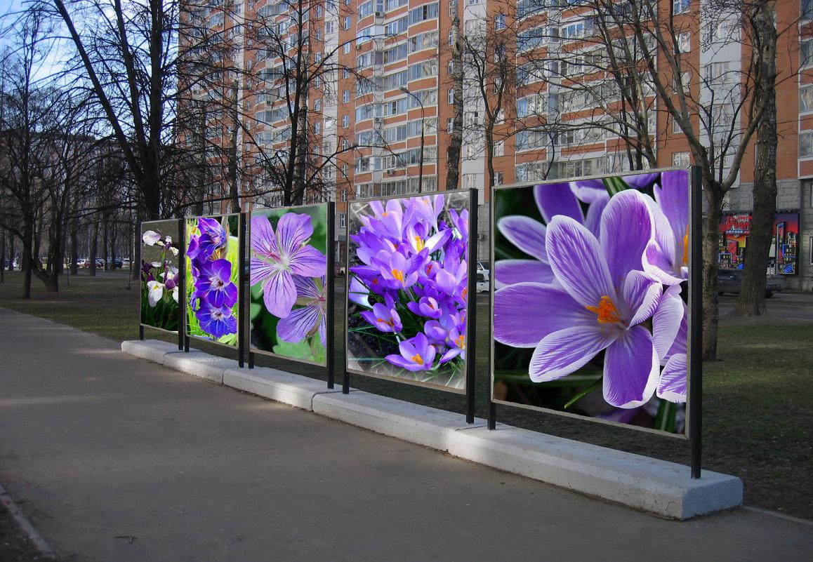 В ожидании весны - Nina Yudicheva