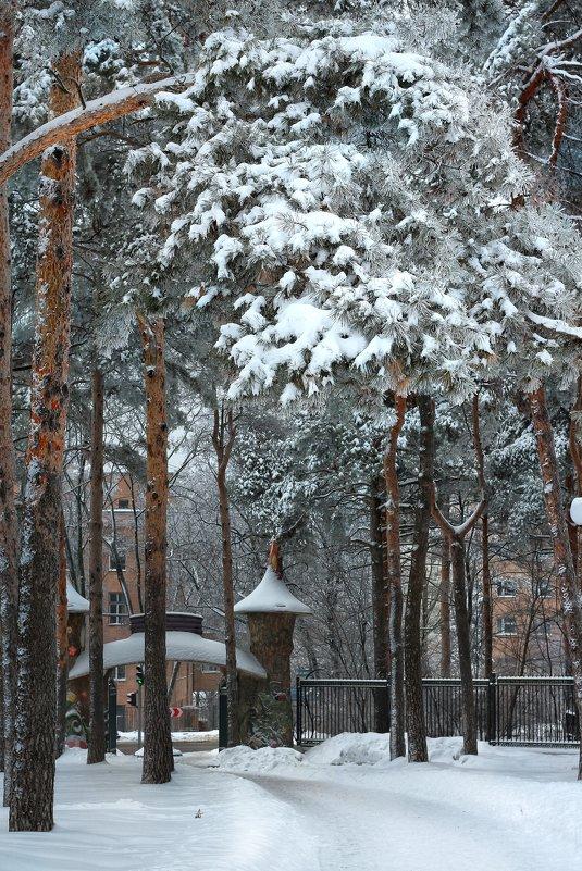 Дальние ворота парка, или  Где заканчивается сказка.. - Ирина Сивовол
