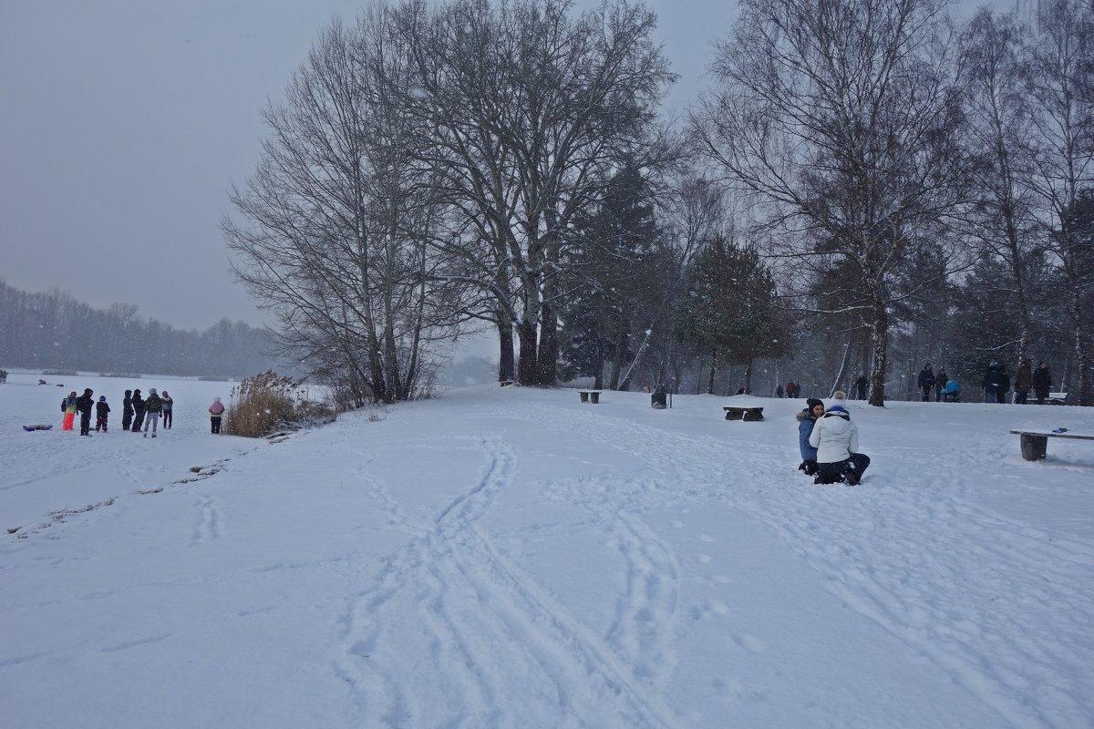 Снег идет, снег идет... - Galina Dzubina