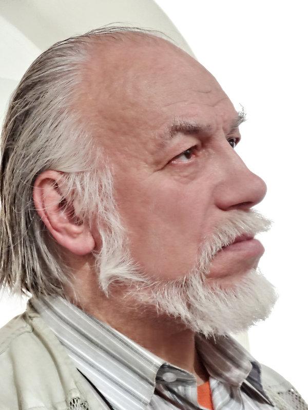 Стариков Леонид - Валерий Талашов