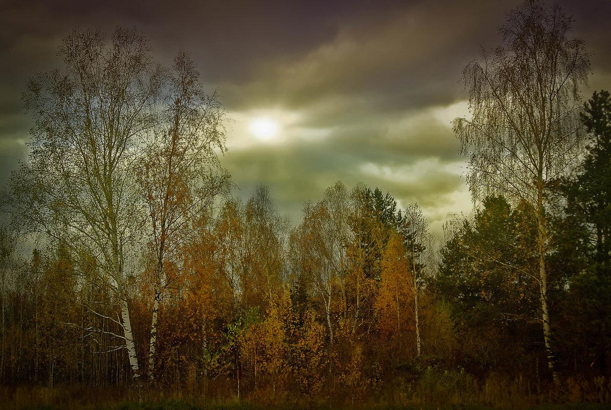 Дыхание осени. - Алла Кочергина