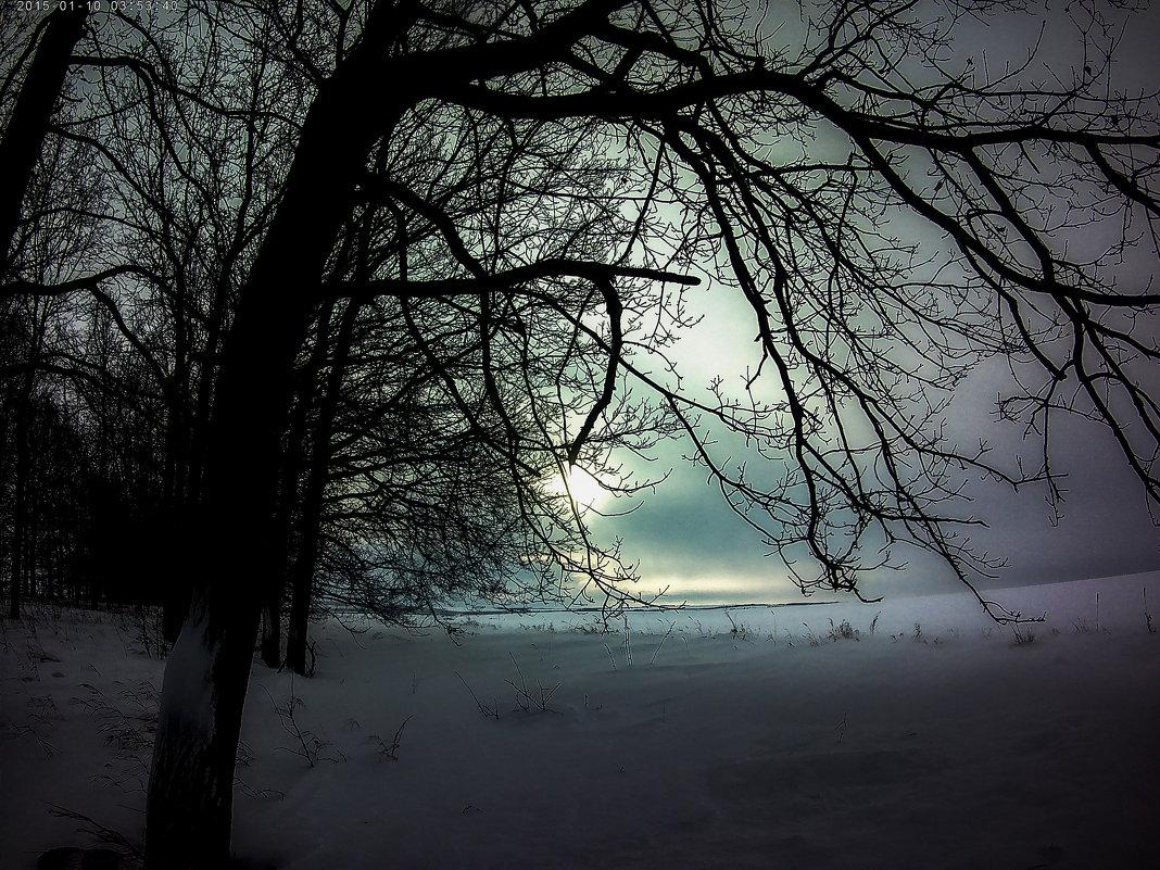 Деревья и облака. - Franky Fraker