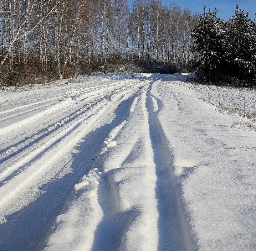 Зимняя  дорога. - Валерия  Полещикова