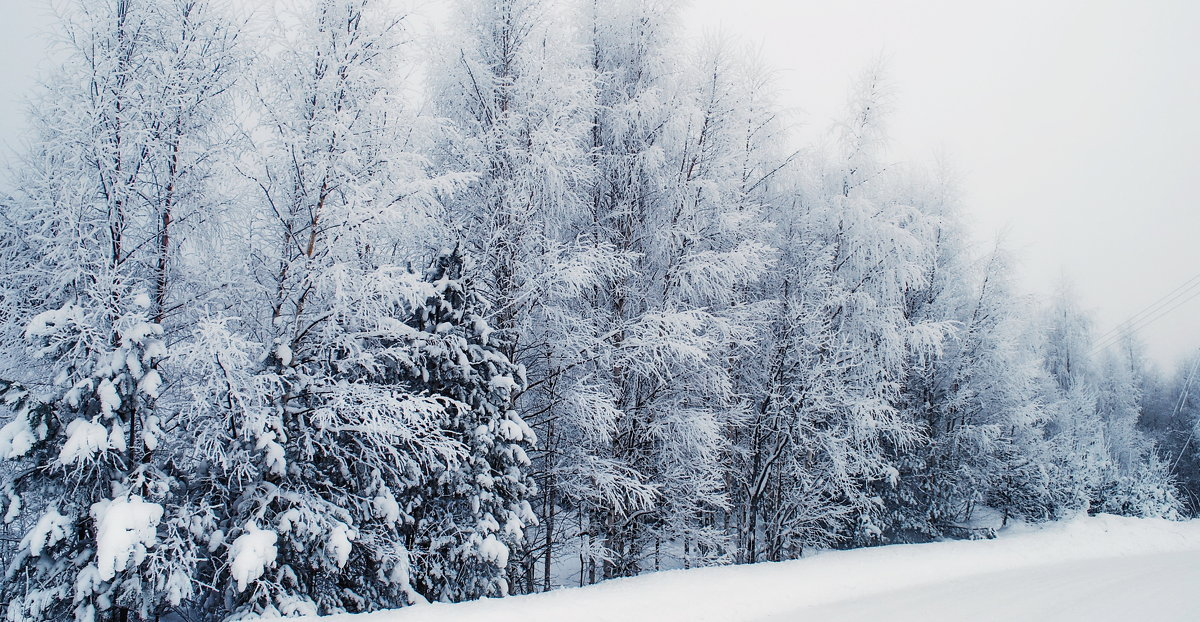 Зимний пейзаж - Анастасия Смирнова