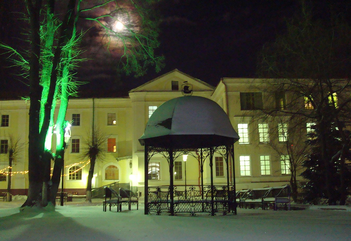 В ночь под Рождество... - youry