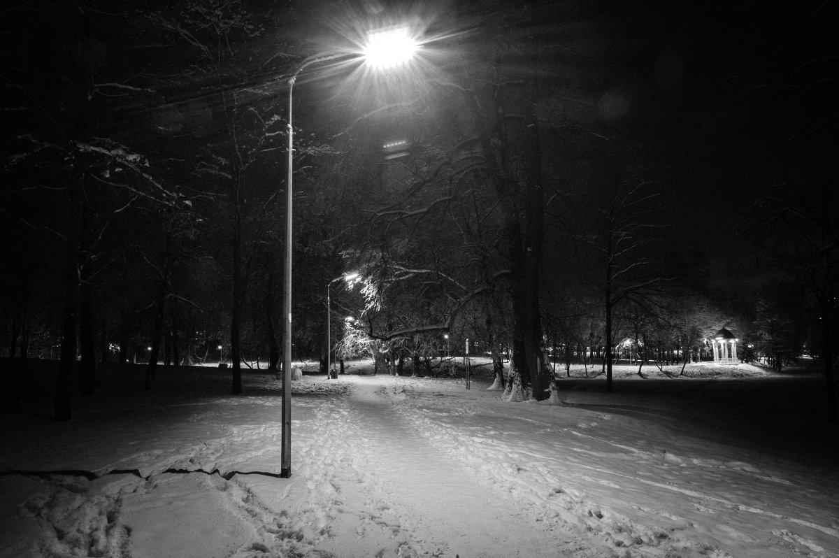 ночь в парке - Евгений Лебедь