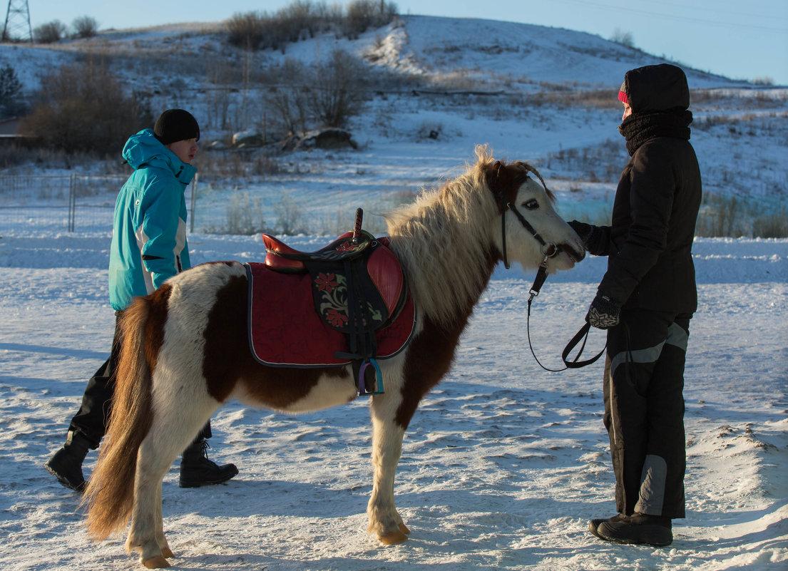 Пони с косичкой, или любовный треугольник?... - Игорь Карась