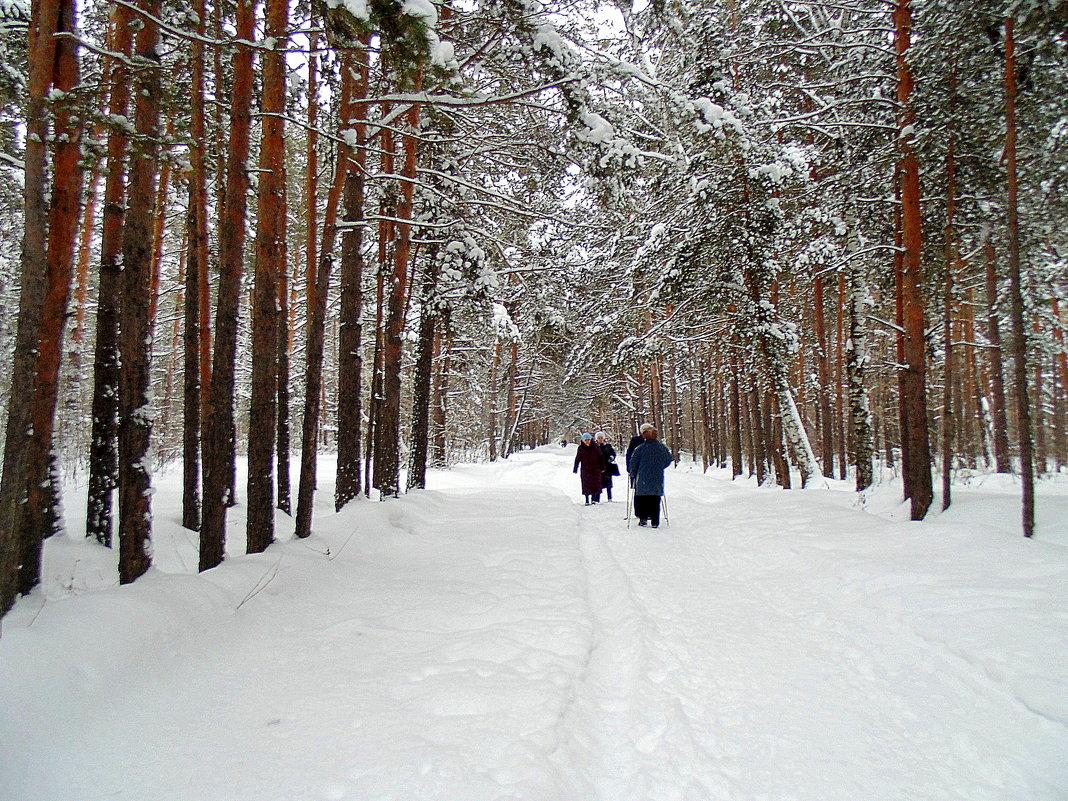 Прогулка по лесу. - Мила Бовкун