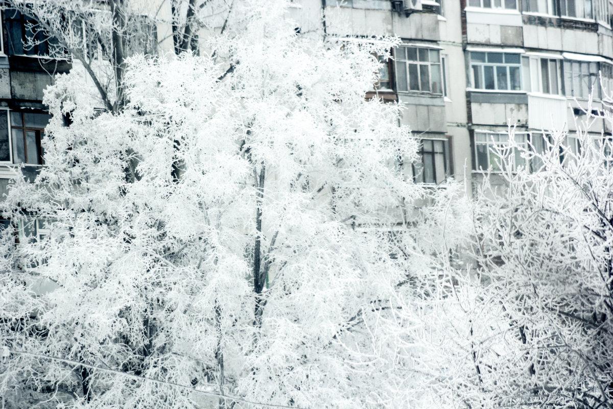 Snowy town - Алексей Гончаров