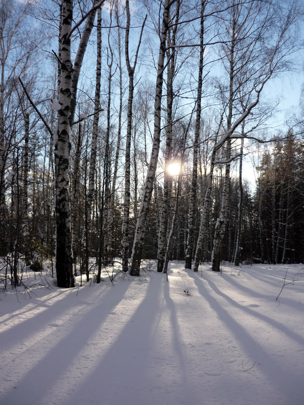 Январь - Ольга