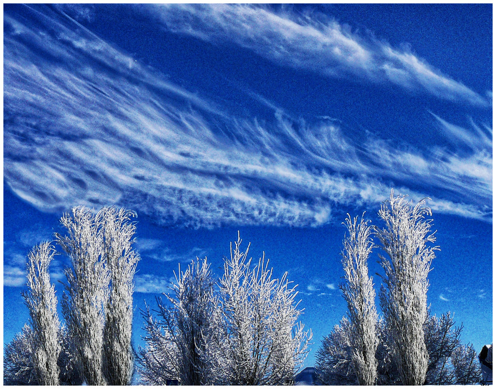 смотрящие на облака - павел бритшев