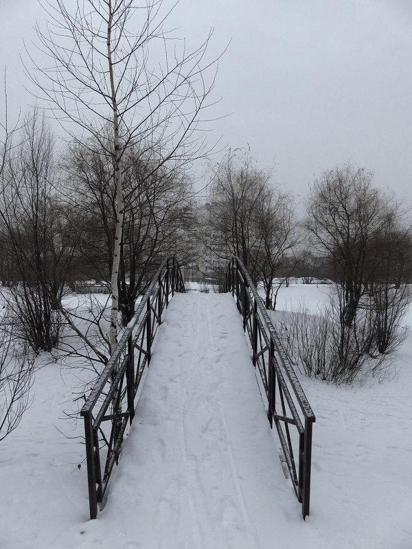 Между Рождественскими и Крещенскими морозами - Андрей Лукьянов