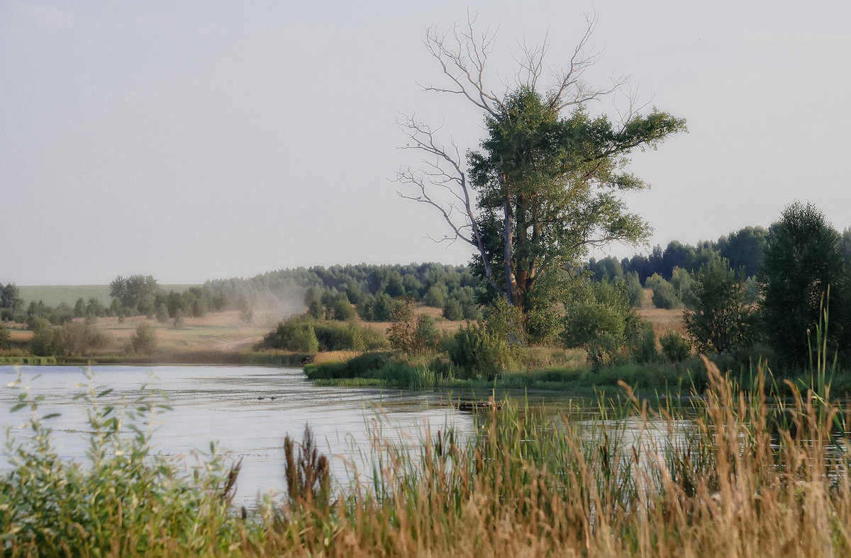 У деревенского пруда - Luis-Ogonek *