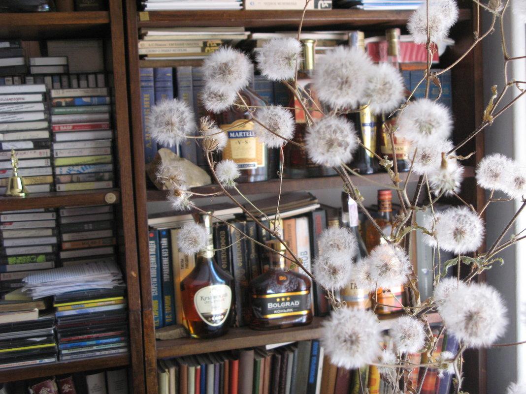 Одуванчики отмечают Старый Новый год в библиотеке... - Алекс Аро Аро