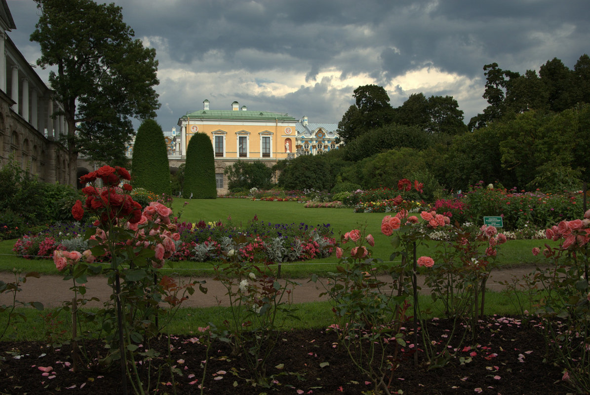 В саду у Камероновой галереи... - Наталья