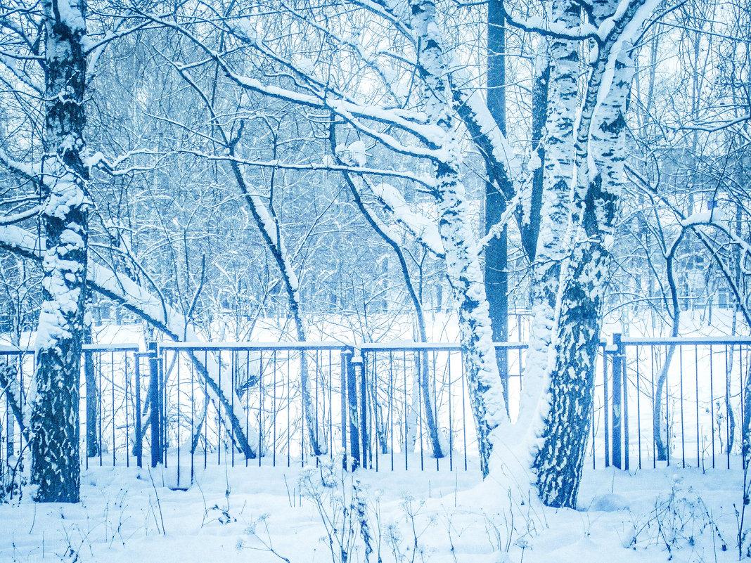 зимняя пора - Елена Мир
