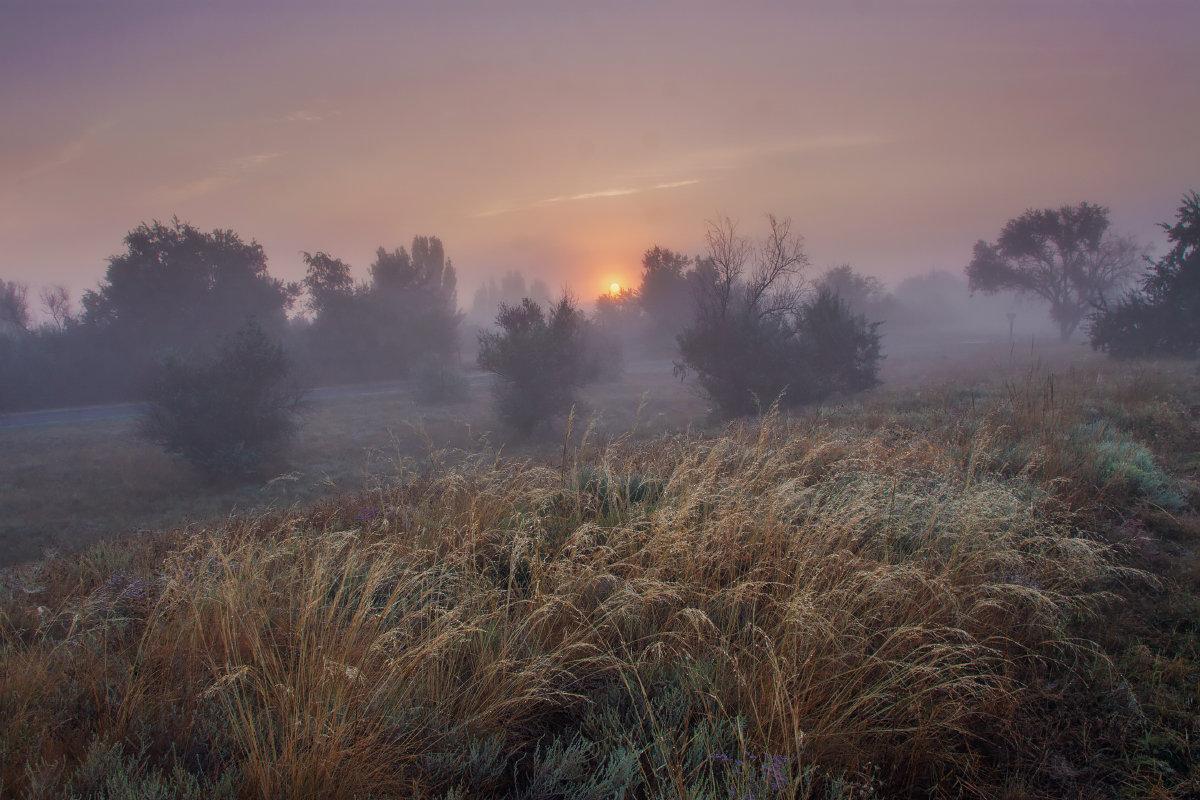 Утренняя прохлада - Алина Шостик