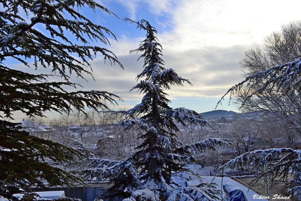 Зимний пейзаж - Виктор Шандыбин