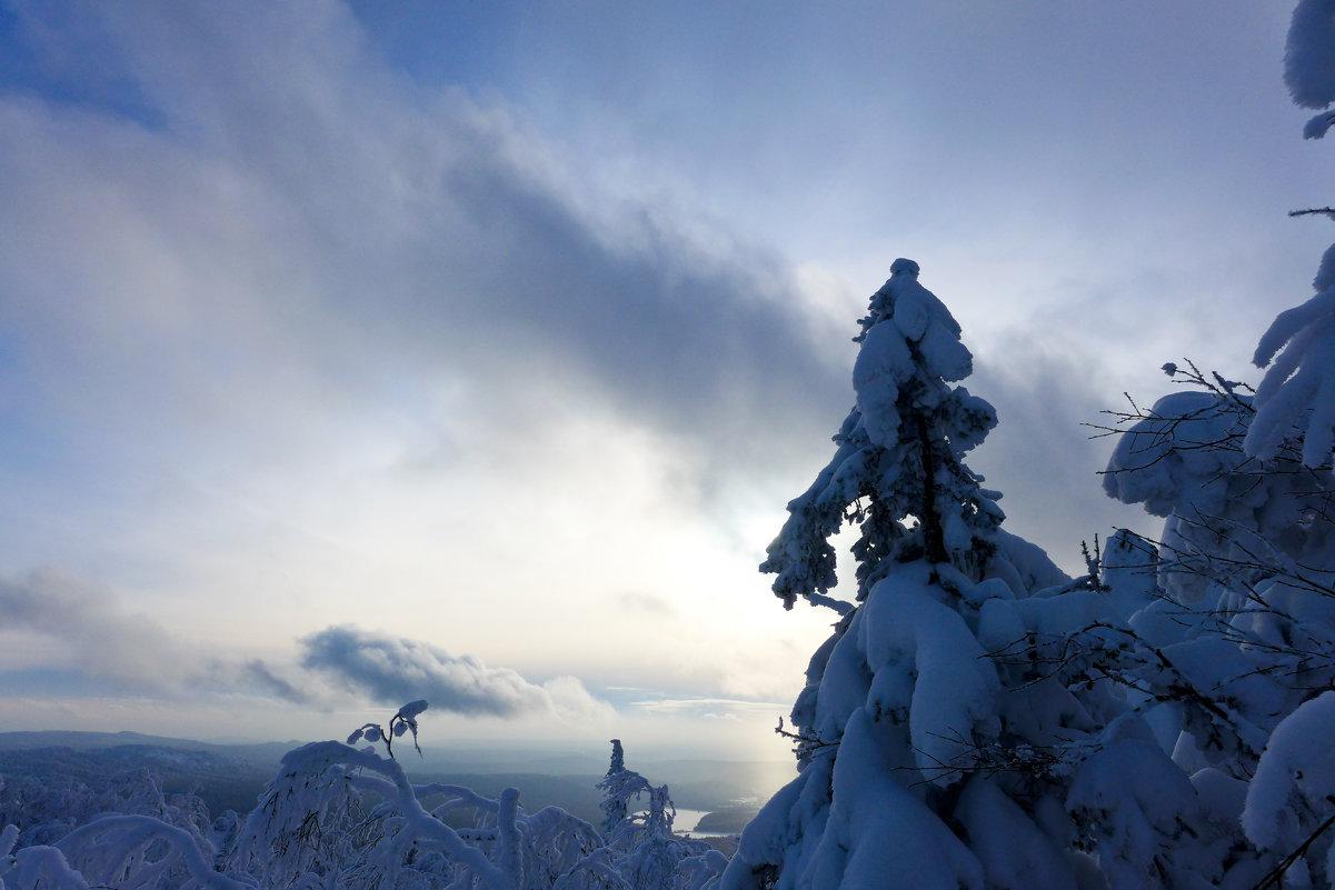 Закатное солнце - Светлана Игнатьева