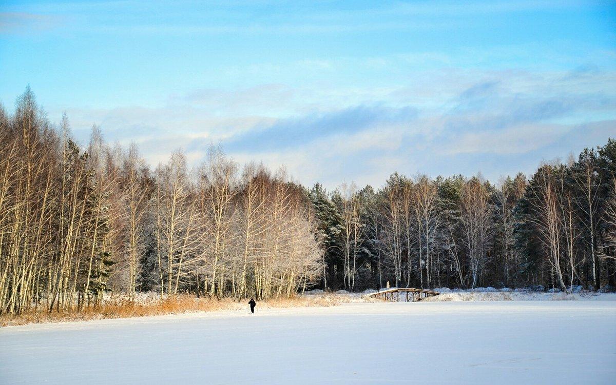 Одинокий лыжник на Рождественской лыжне - Милешкин Владимир Алексеевич