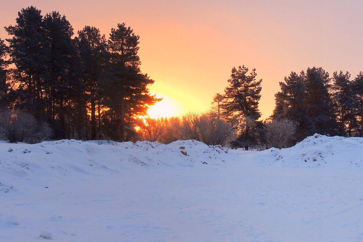 Зимний рассвет - Павлова Татьяна Павлова