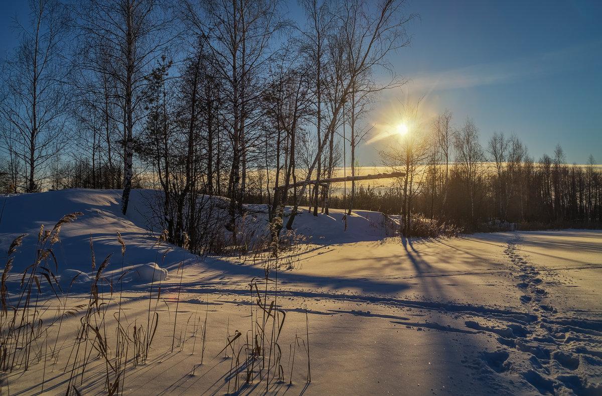 Начало января 2017 - Андрей Дворников