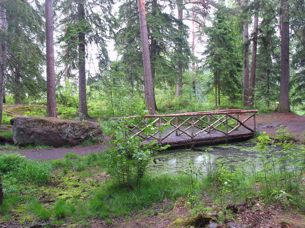 Небольшой искусственный пруд в форме боба и мостиком над ним - Елена Павлова (Смолова)