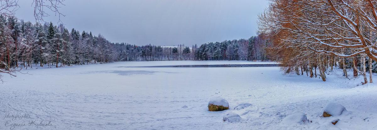 Зима на озере - Евгения К