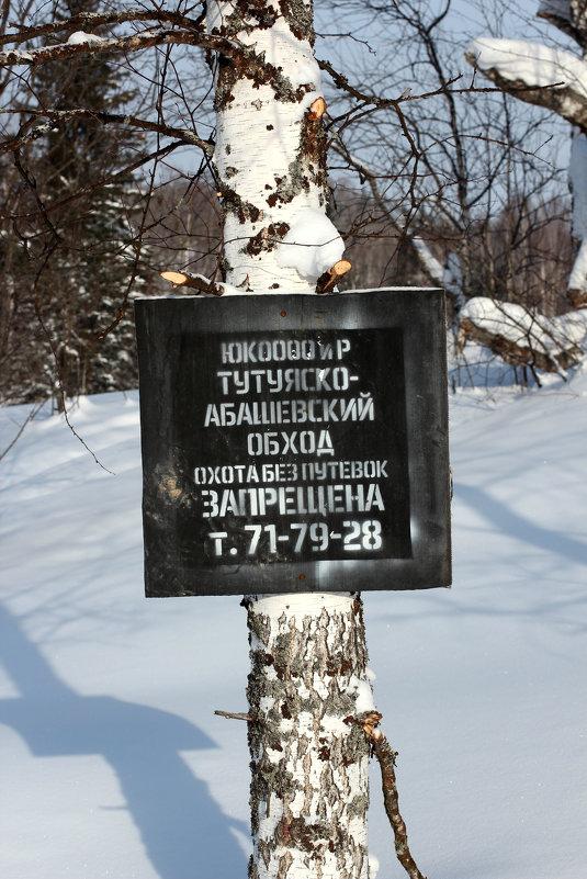 Граница - Дмитрий Арсеньев