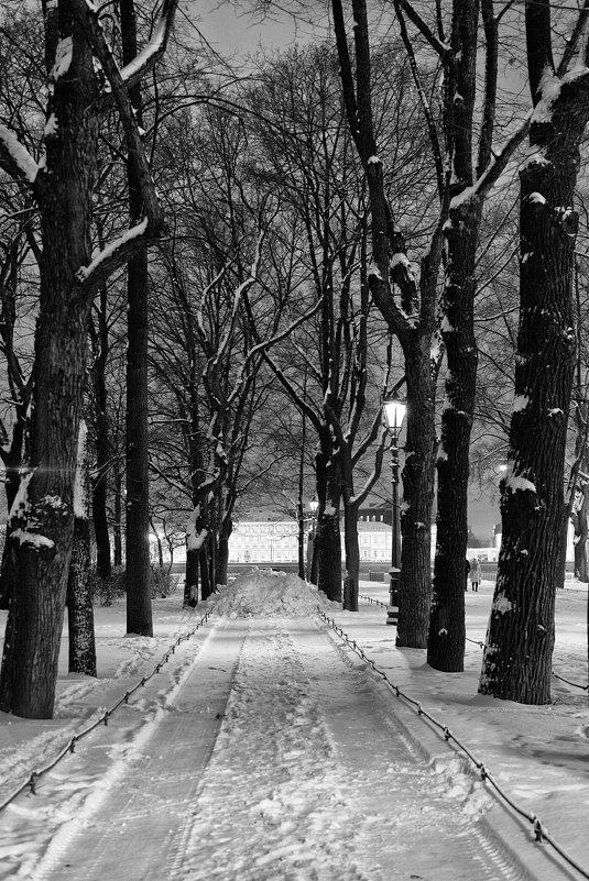 Зимний парк. - Игорь