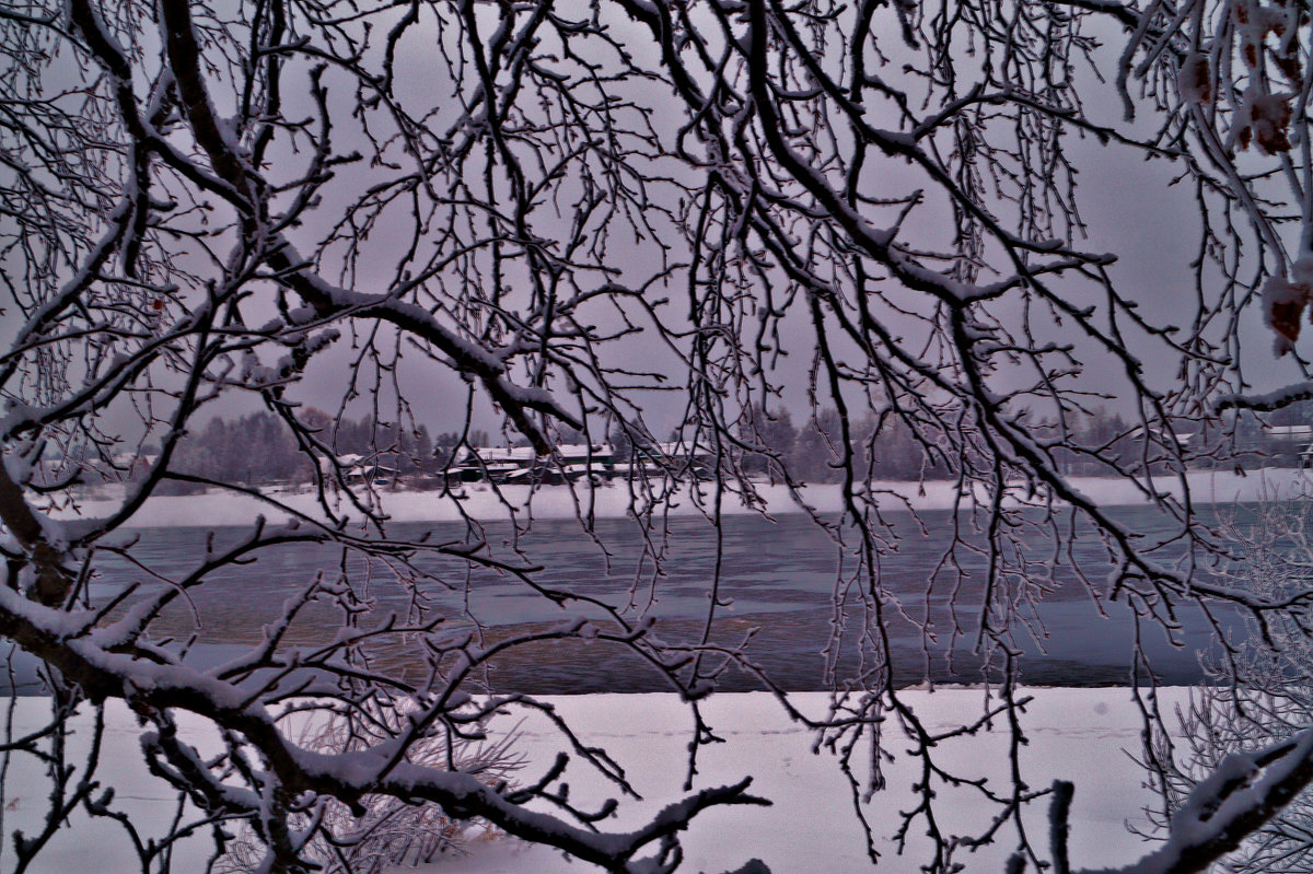 где то там за ветвями деревьев - Валерия Воронова