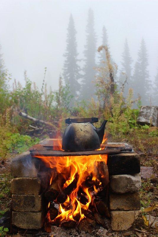 Утренний чай в лесу - Сергей Чиняев