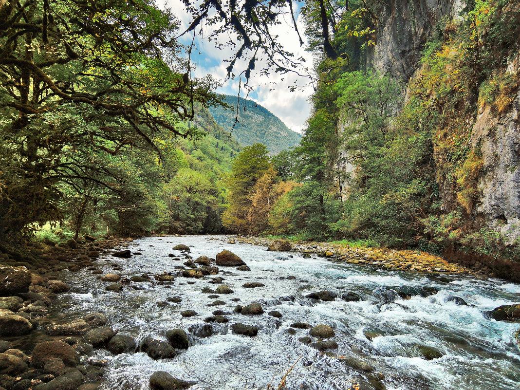 Абхазия река Бзыбь - Денис Масленников